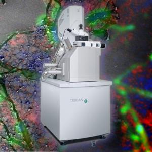 TESCAN SEM/FIB-SEM ze Spektrometrią Ramana
